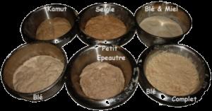 fabrication des pains bio: les levains